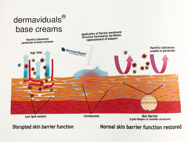 Dermaviduals - skin barrier